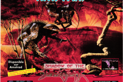 shadow_of_the_beast_gremlin_1990